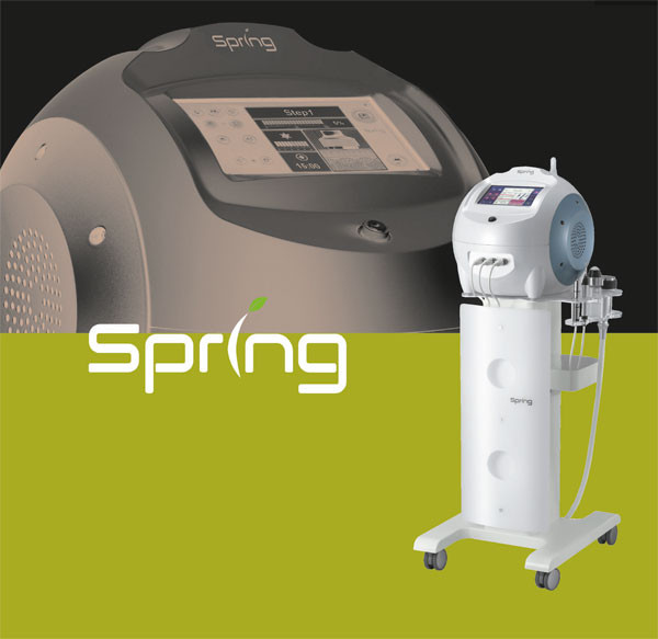 Spring elektroporaatio