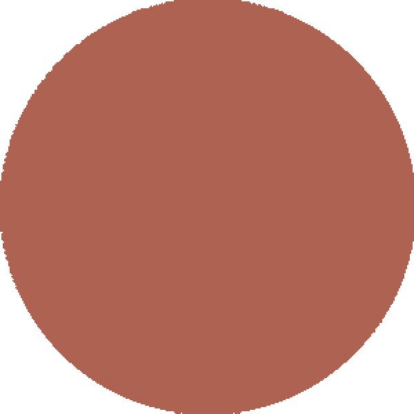 Scandinavian Skin Pigments Mocha 12 ml