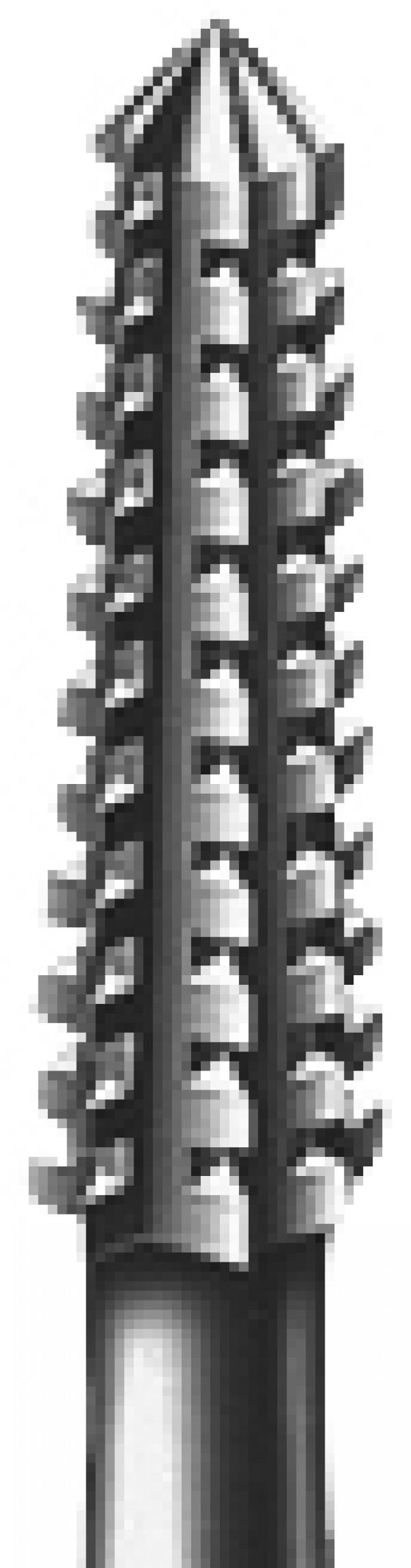 Leikkaava fissuuraterä 1,0 mm 2 kpl